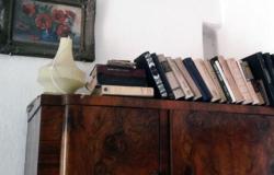 Мемориальный дом «Ливиу Дамиан»