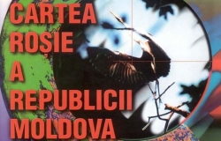 "In May there will be a new edition of the ""Red Book"" of Moldova"